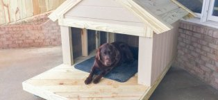 Build your own Dog house kit